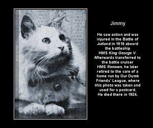 King George V - Jimmy.jpg